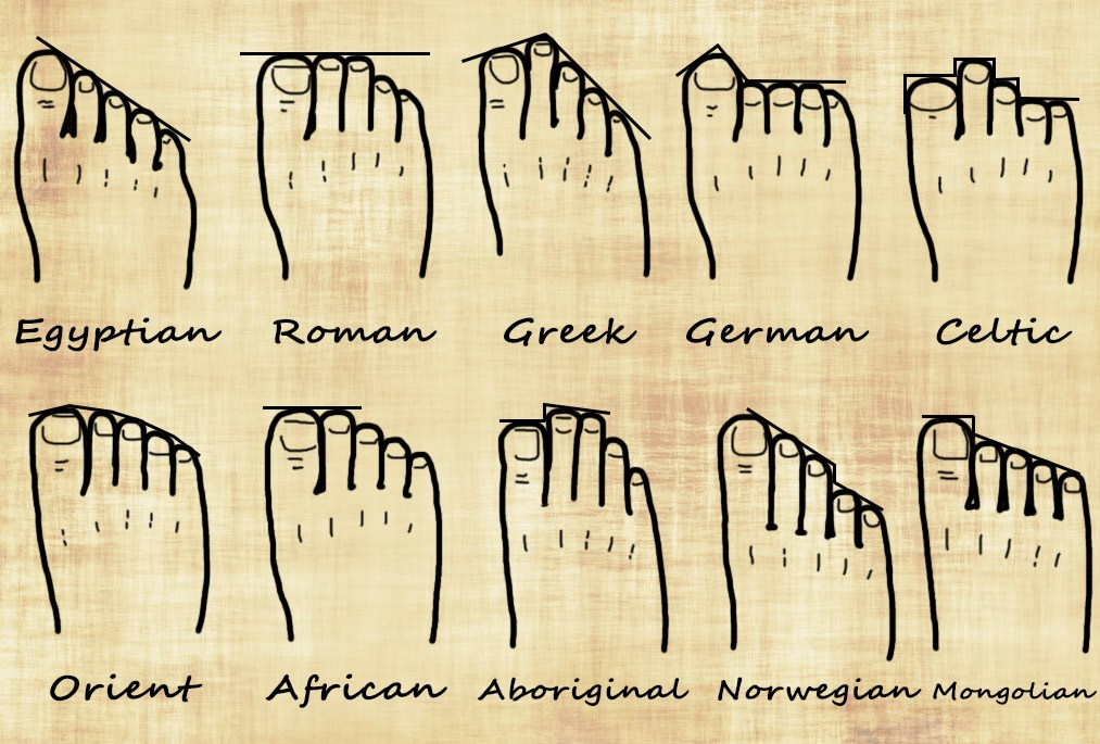 Your foot shape and your genealogy